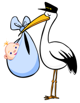 Stork-with-Blue-Blanket