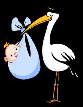 Stork-with-Blue-Blanket