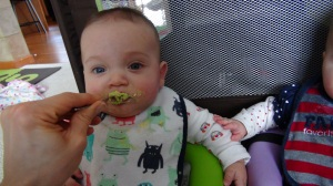 Theo chowing down on avocado